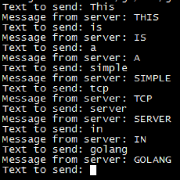 golang-tcp-server